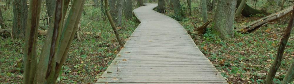 der Weg ist das Ziel - oder ist das Ziel der Weg?